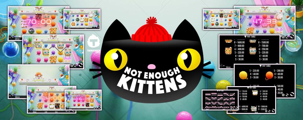 ny slot not enough kittens